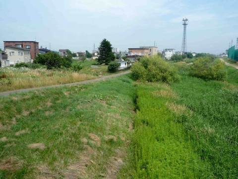 「百合が原から東茨戸」コース:旧琴似川沿いの道