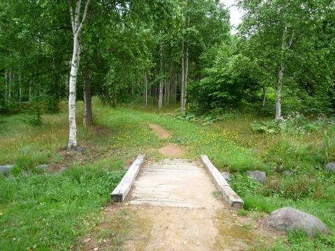 歌才森林公園コース
