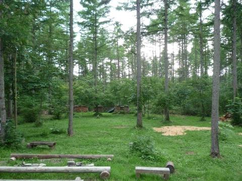 トラストの森