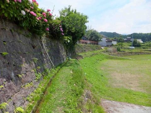 小崎棚田コース:あぜ道も歩く
