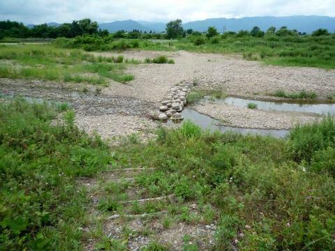 最上川フットパスルート1:置賜白川の飛び石